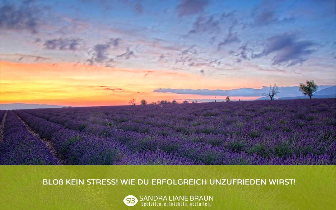 Bloß kein Stress! Wie Du erfolgreich unzufrieden wirst!