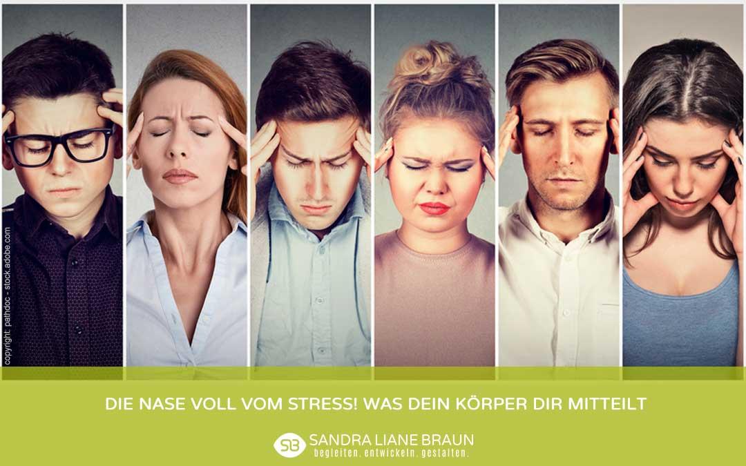 Die Nase voll vom Stress! Was Dein Körper Dir mitteilt