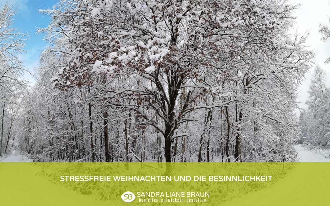 Winterbaum Weihnachten